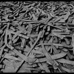 génocide des tutsi