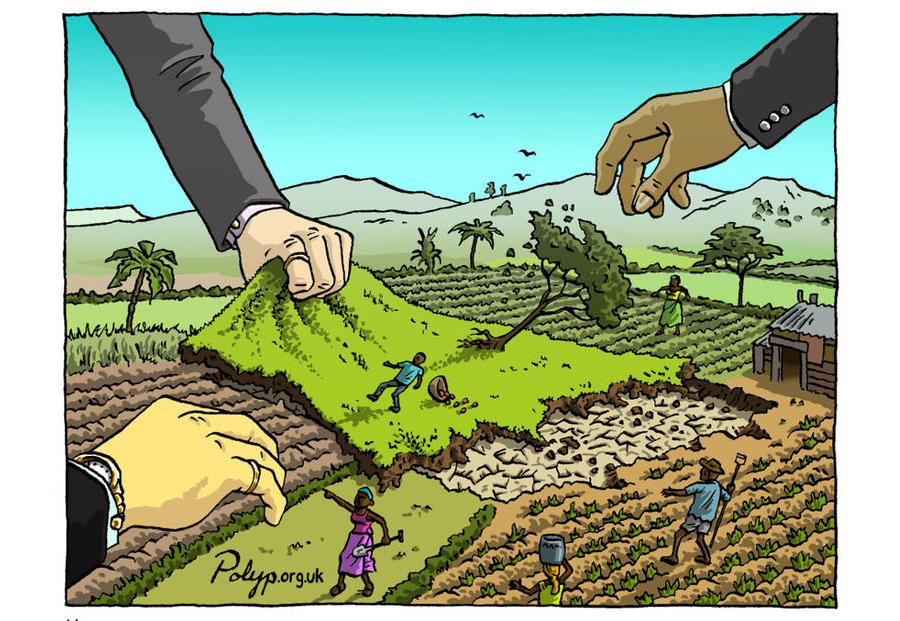 Le 'land grabbing', nouvelle facette du colonialisme