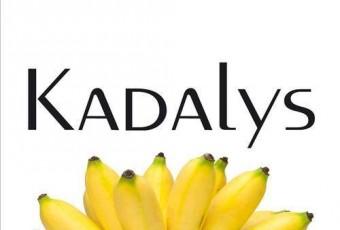 Kadalys, première marque de cosmétologie naturelle aux actifs de bananier