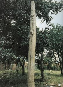 Monolithe du début du 2ème millénaire après notre ère à Ifé, Nigéria. D'après la tradition, il serait associé à Oranmiyan. On l'appelle Opa Oranyan 'bâton d'Oranmiyan' en yoruba.