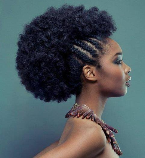 Exemple coiffure cheveux afro