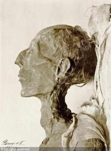 La momie de Ramsès II, ses chevex sont ondulés mais le roi et le prince égyptien n' apparait jamais avec ses cheveux naturels