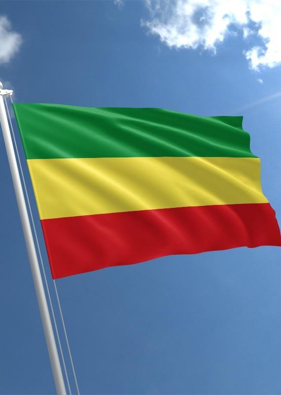 Pourquoi les drapeaux de tant de nations noires ont-ils les mêmes couleurs ?