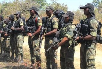 Boko Haram au Cameroun : Intérêts et perturbations