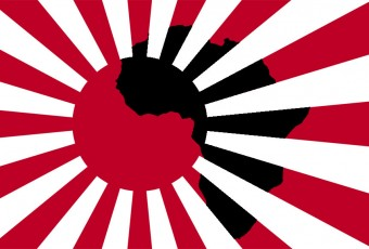 Ariana Miyamoto : caution japonaise  pour le marché africain ?