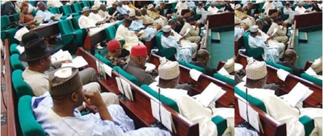 Nigeria : Les parlementaires gagnent deux fois plus que leurs homologues français