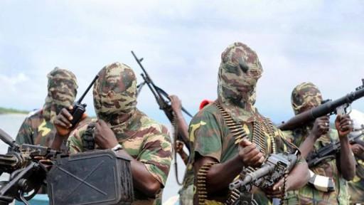Boko Haram empoissonne des sources d'eau dans le Nord-est du Nigeria