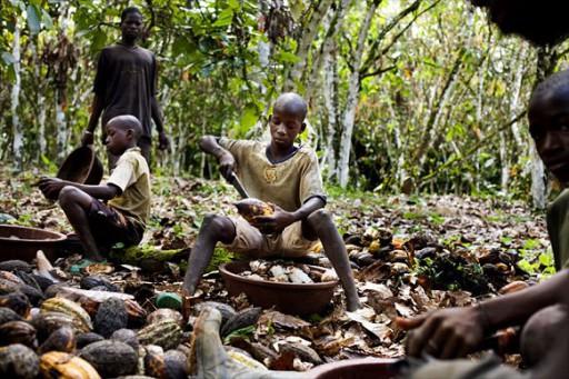 Nestlé, Mars et Hersey's poursuivis pour traite d'enfants esclaves