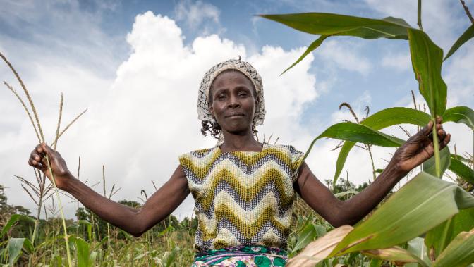 5 raisons d'investir dans l'industrie agro-alimentaire en Afrique
