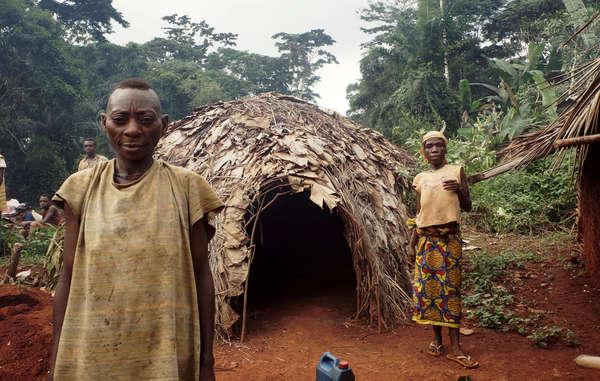 Une ONG dépose une plainte contre WWF pour violation des droits de l'Homme au Cameroun