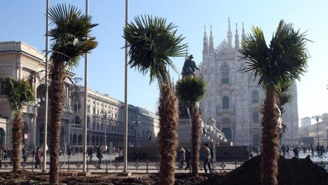 Italie : des palmiers brûlés après une manifestation contre l'africanisation des lieux