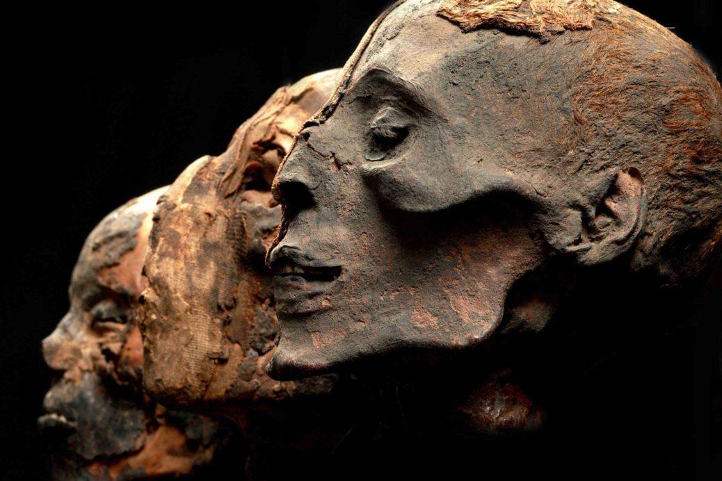 adn des Egyptiens anciens