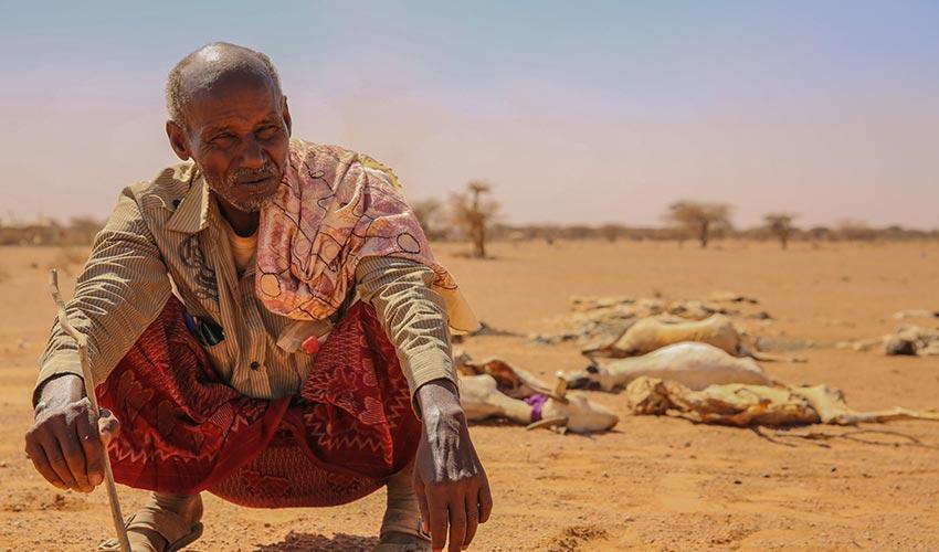 La famine s'accroît en Afrique du fait des conflits et du changement climatique