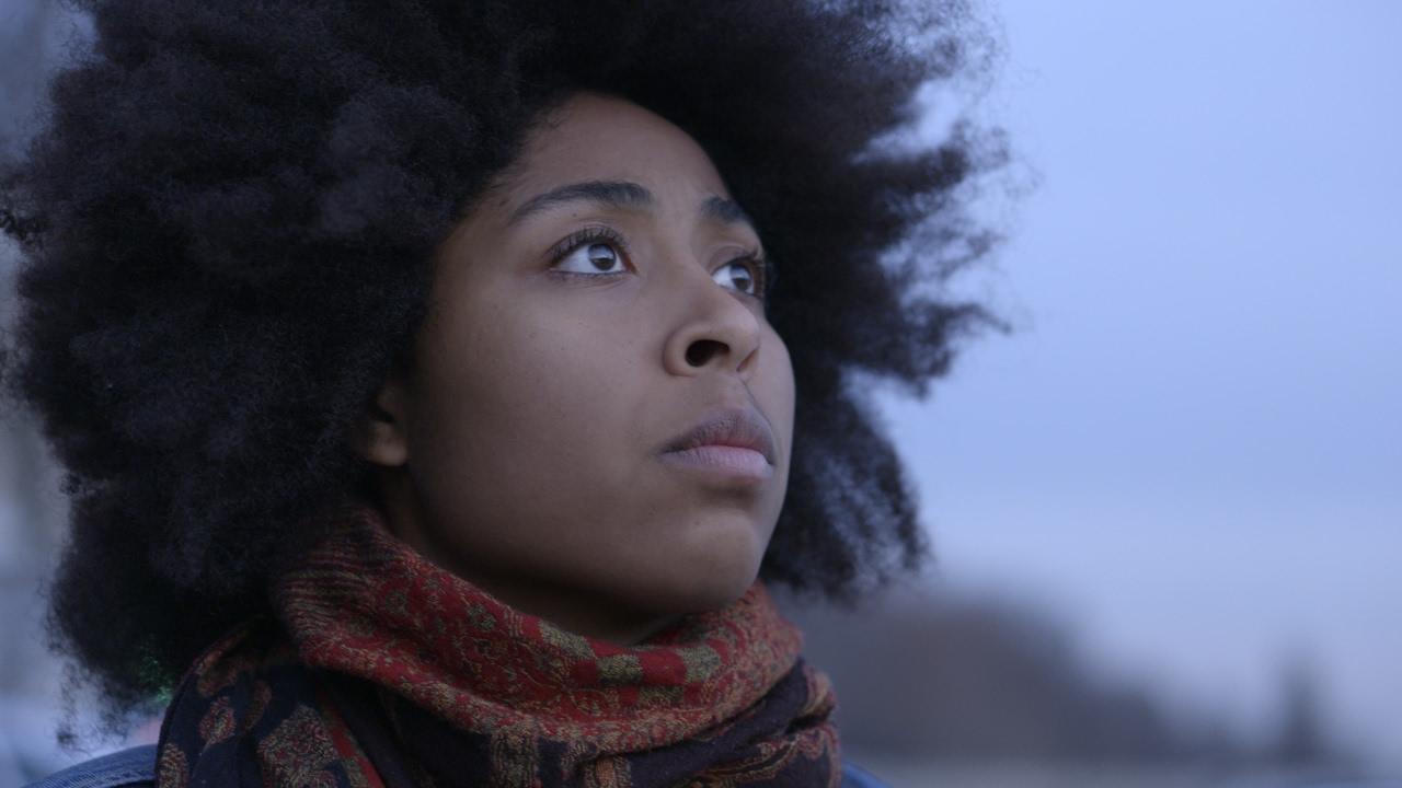 Mariannes noires : une mosaïque afropéenne