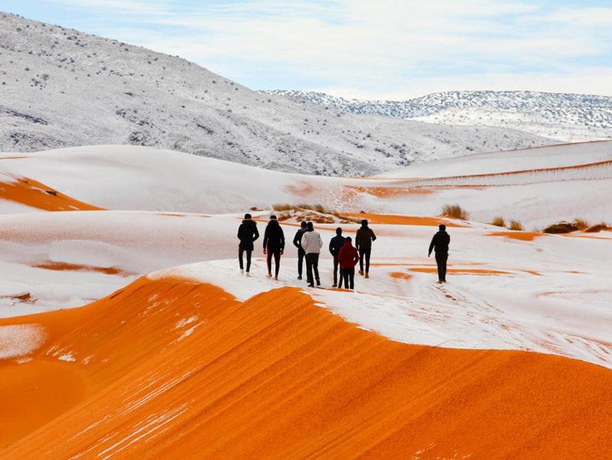 Les multiples visages du Sahara