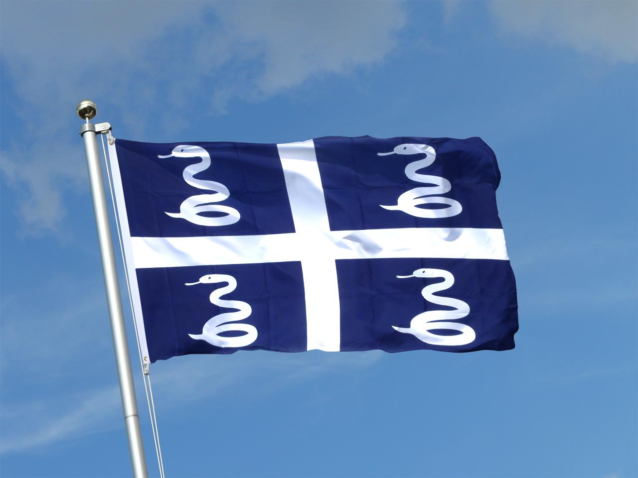 """drapeau dit """"aux 4 serpents"""""""