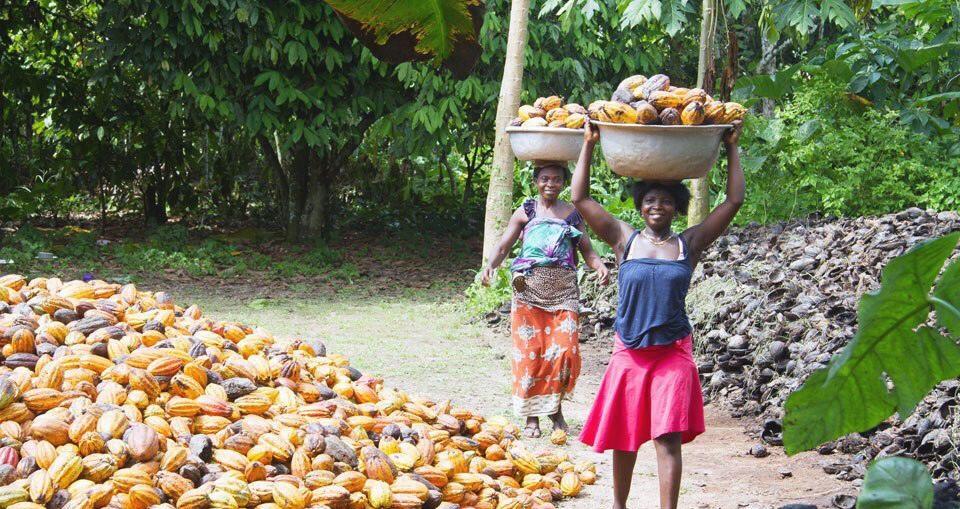 Le PIB du Ghana vers une augmentation de 40%
