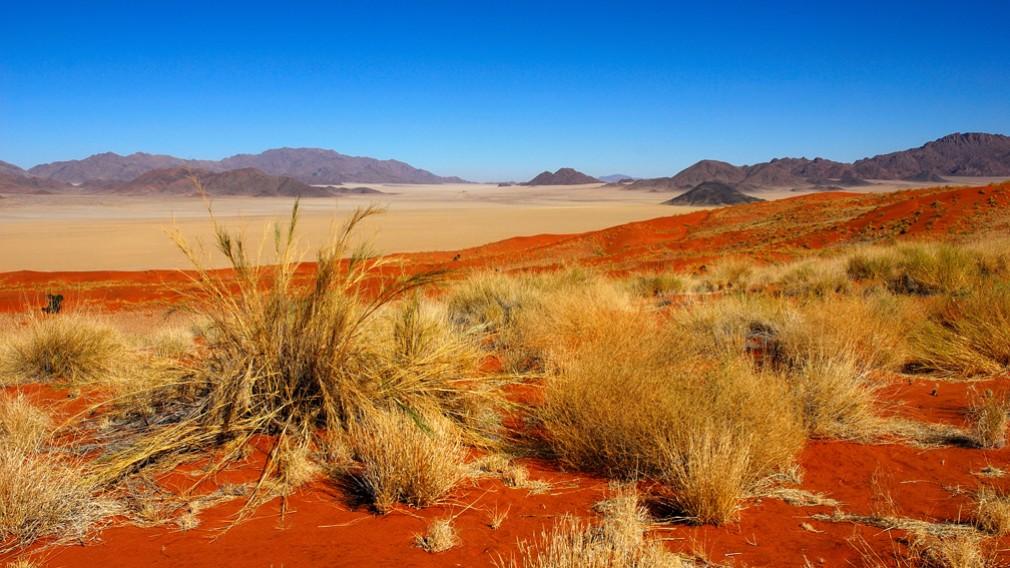 Désert de Kalahari, Namibie