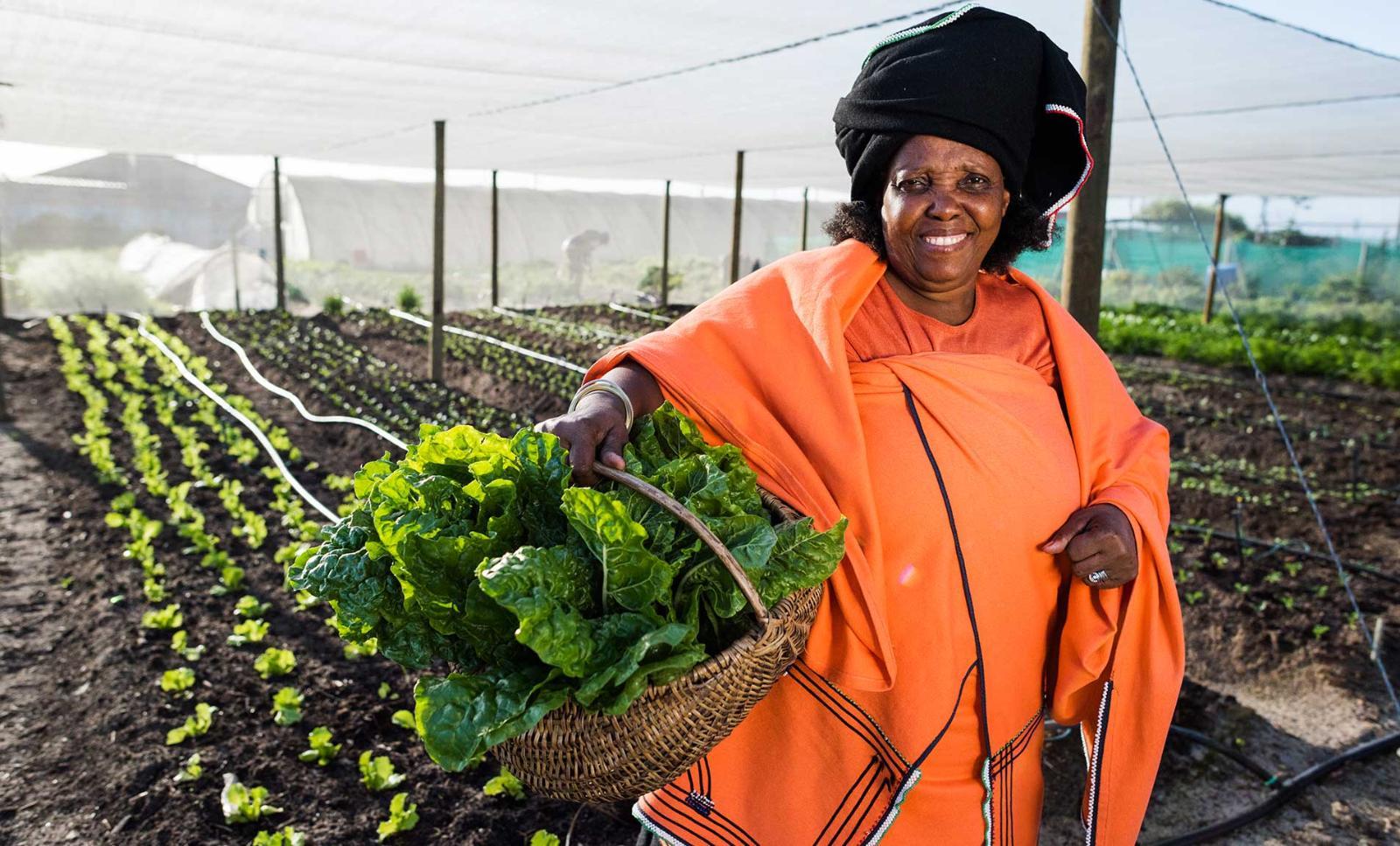 Les Africaines sont les premières en matière d'entrepreneuriat féminin