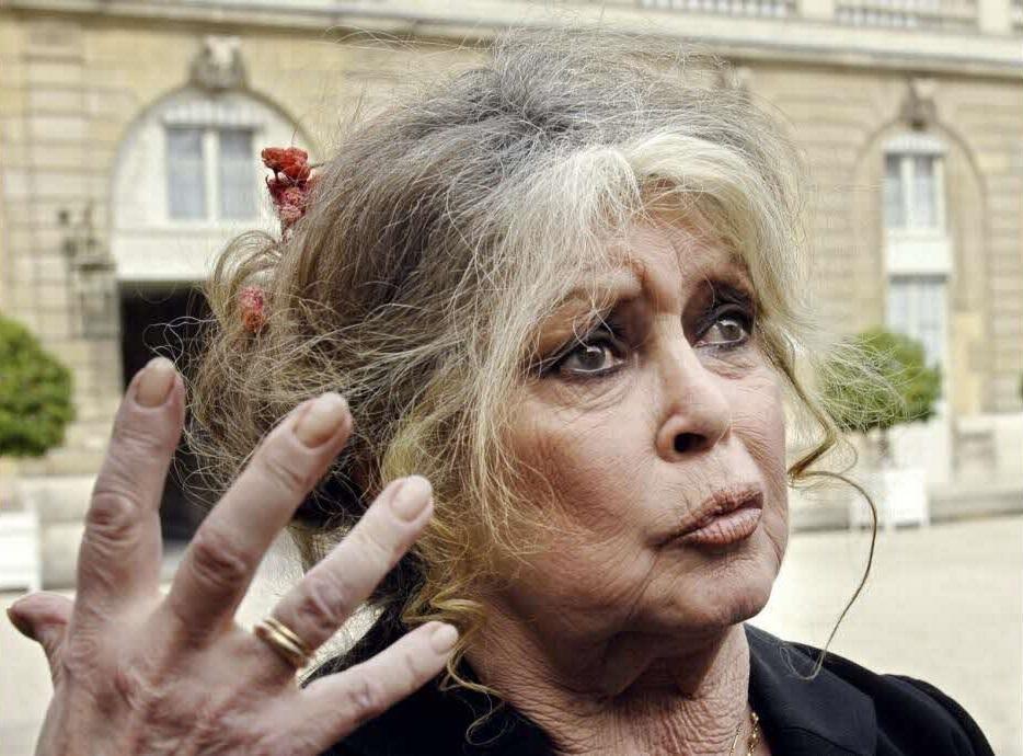 Affaire Brigitte Bardot: Le CRAN saisit le procureur de la République