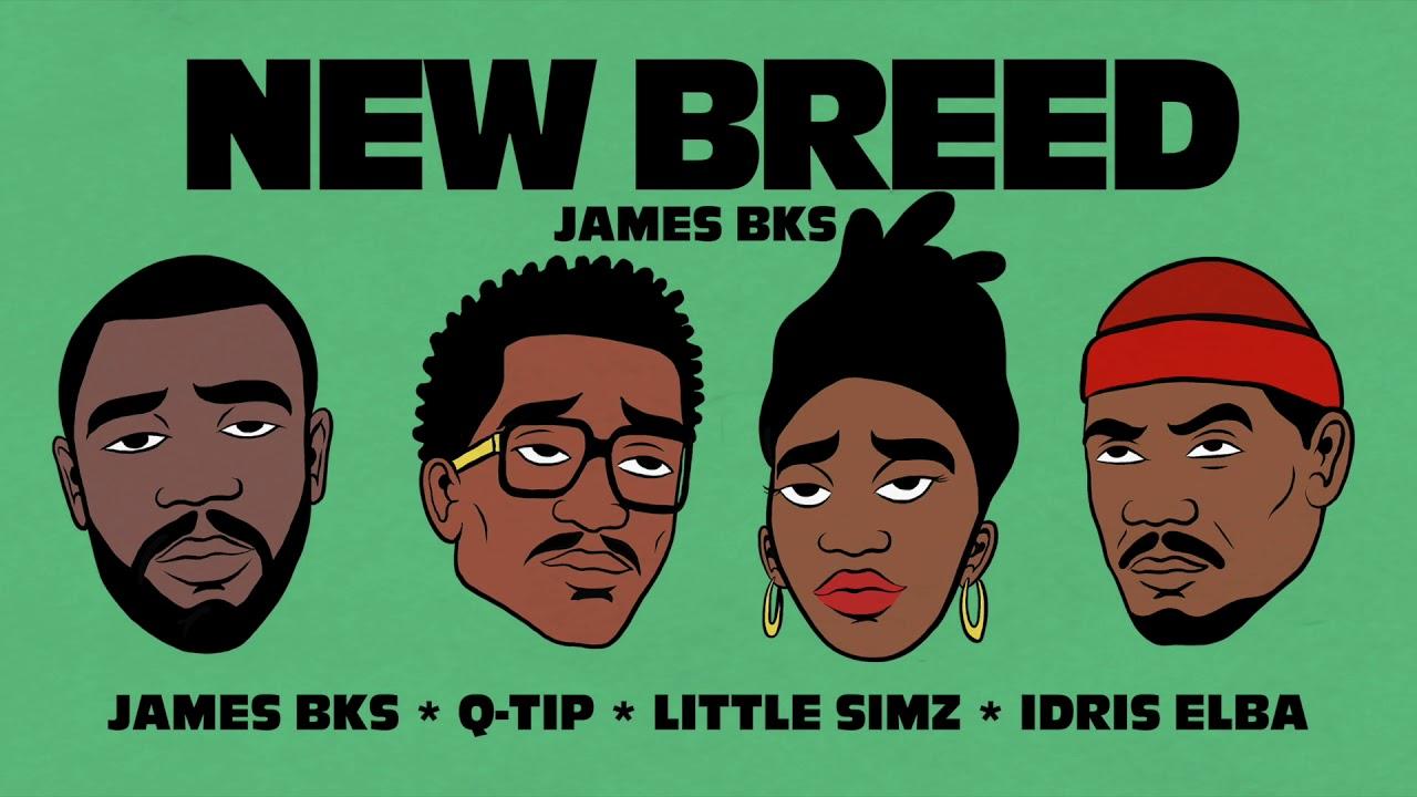 Chapitre III: New Breed