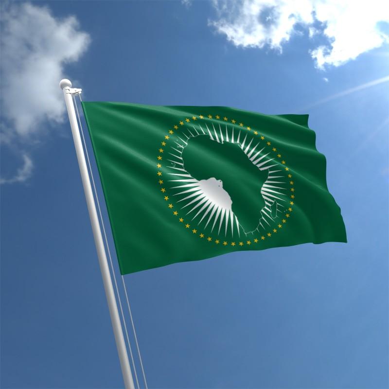 L'Union africaine cherche à obtenir des sièges permanents au Conseil de sécurité